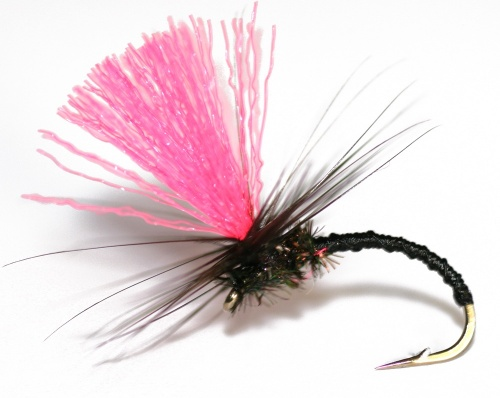 When all else fails- Black Magic! Tie or buy! Stunning Salmon Hairwings!