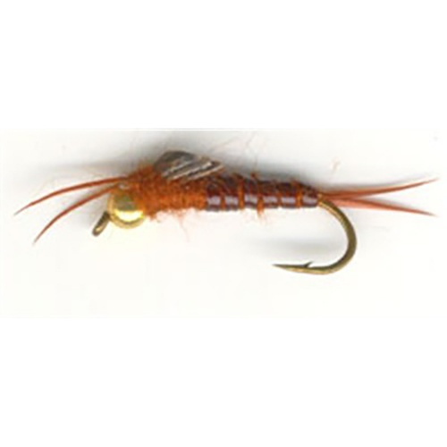 Bead Head  Orange Stonefly