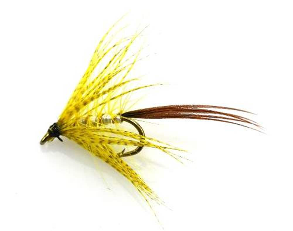 Yellow Mayfly