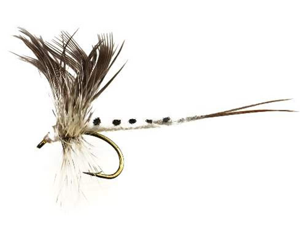 Silhouette Mayfly