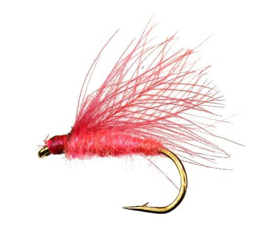 Pink Lady F Fly