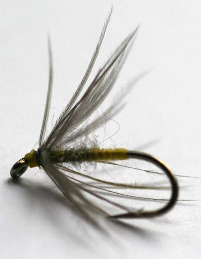Waterhen Bloa Northern Spider Trout Fly - Heritage Range