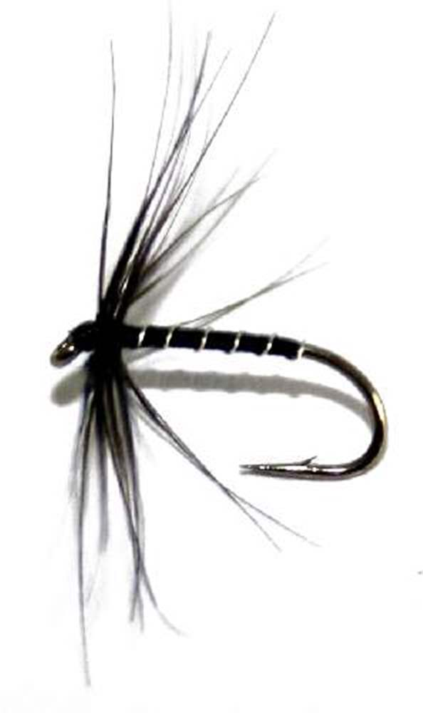 Williams Favourite Northern Spider Trout Fly