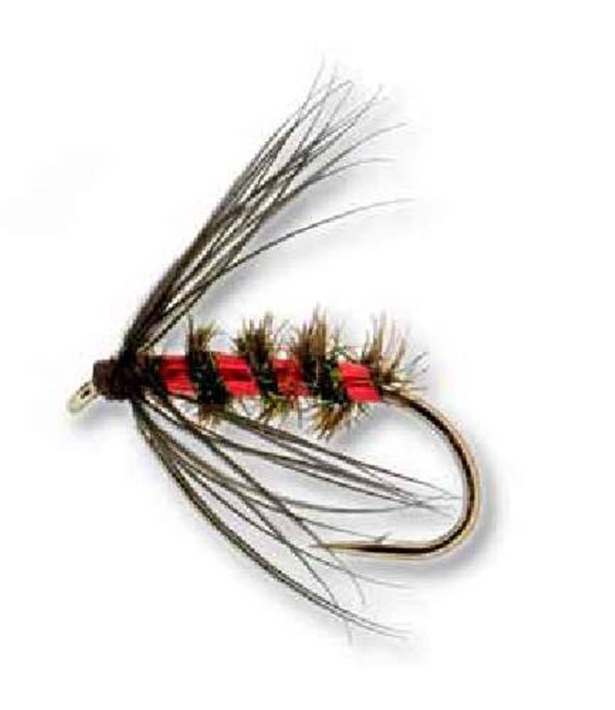 Peacock, Black And Red Northern Country Trout Fly