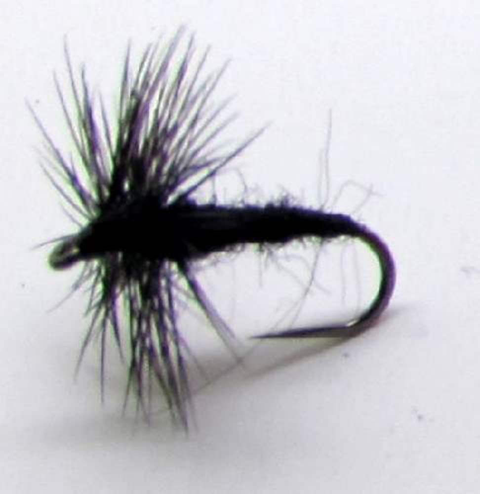 Barbless Black Midge