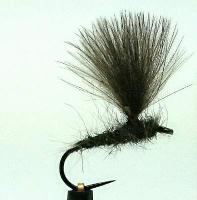 Barbless Upwing Olive Cdc