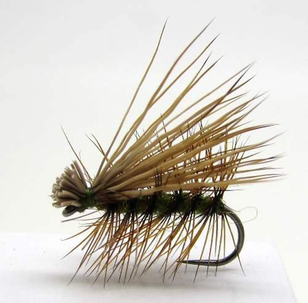 Barbless Elk Hair Caddis Olive