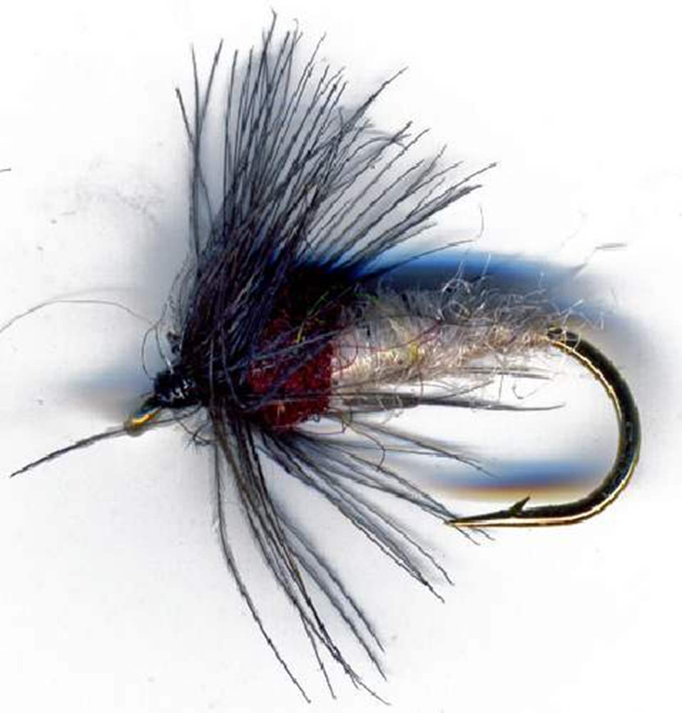 Cream Caddis Pupa Brown