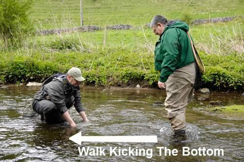 Kick Sampling When Fly Fishing