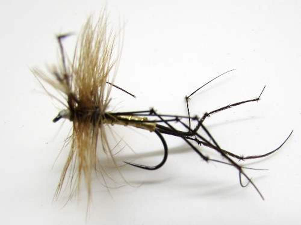 Barbless Daddy Longlegs Or Crane Fly
