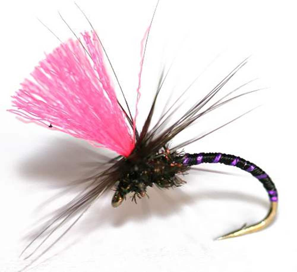 Barbless Black Magic Purple Rib