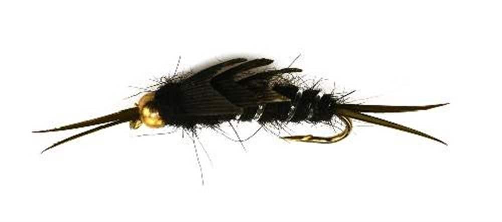 Bead Head  Black Stonefly