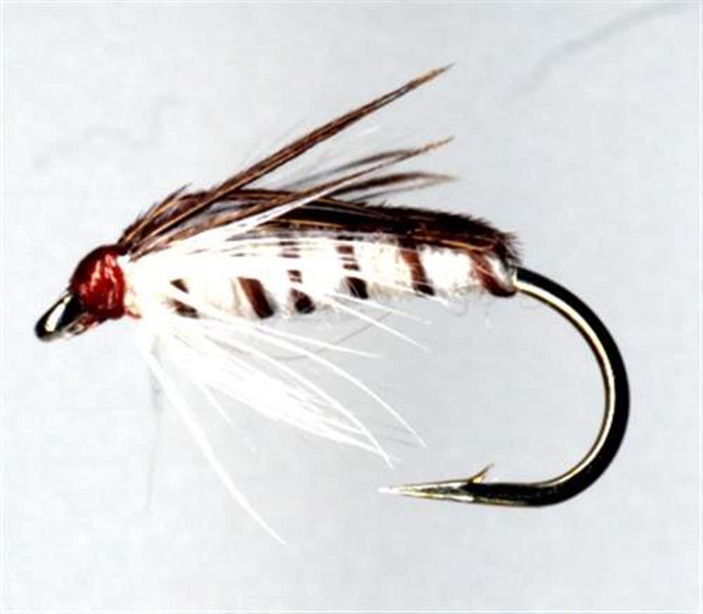 Corixa Or Water Boatmen Trout Fly Patterns
