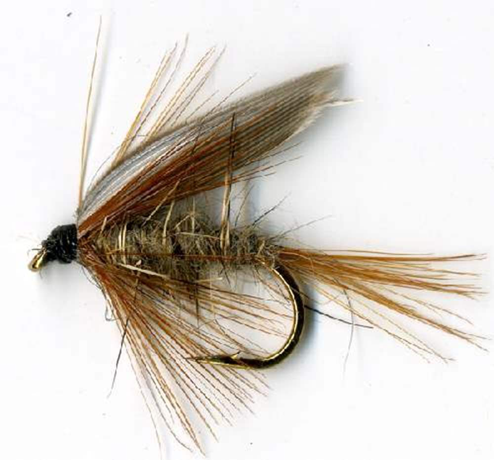 Grhe Wet Winged Fly