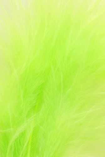 Veniard - Dye Tube - BULK 100g - Fl. Green
