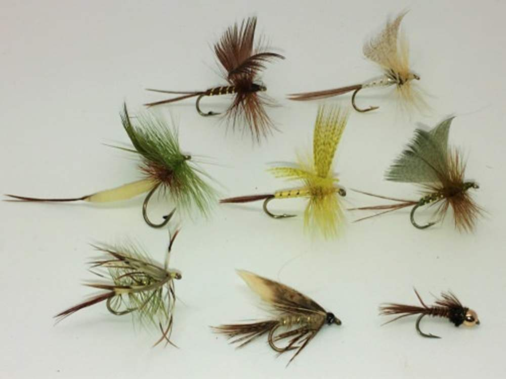 Ephemera Mayfly Collection