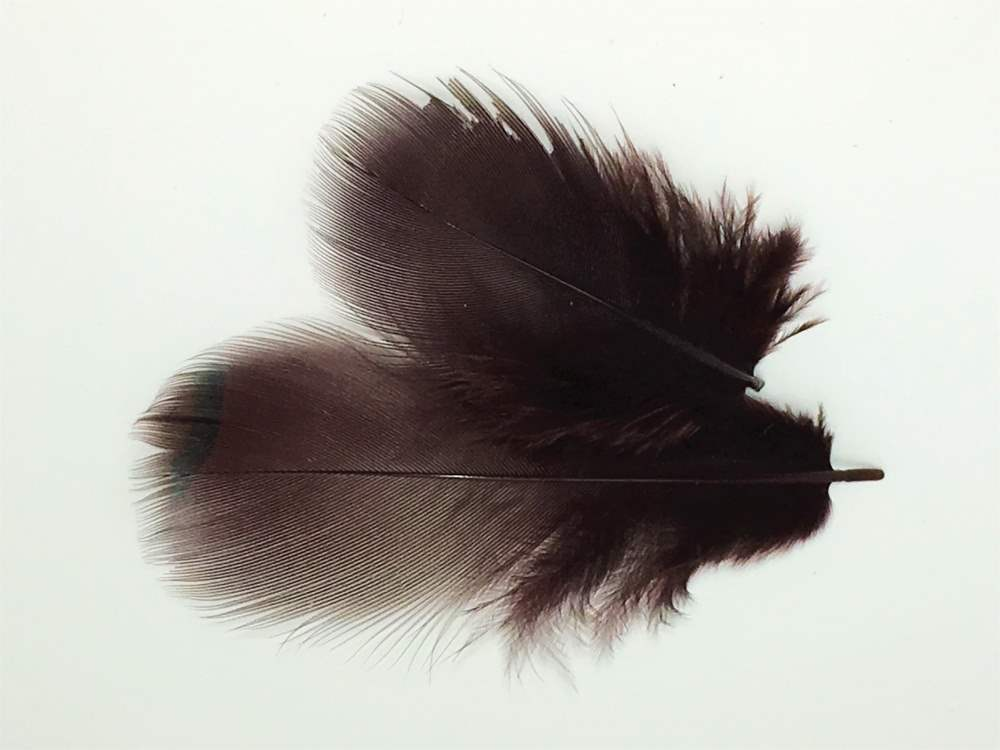 Veniard - French Partridge Hackles - Brown