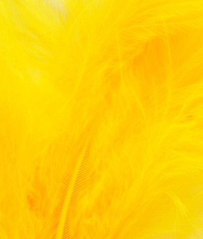 Veniard - Genuine Seals Fur - Sunburst Yellow