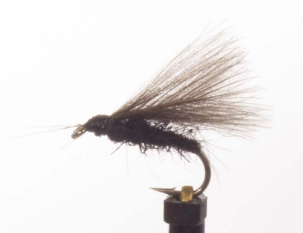 Caddis Black CDC