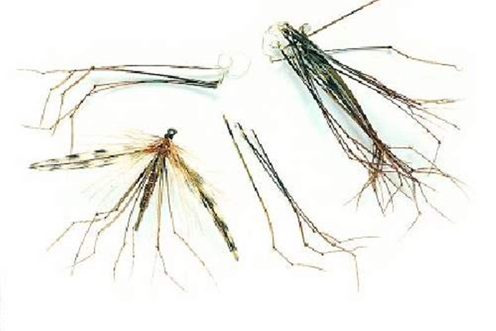 Veniard - Cock Pheasant Tails - Knotted Daddy Legs - Natural