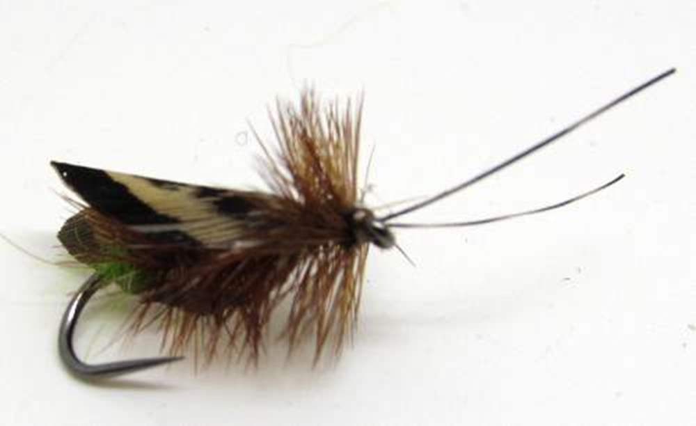 Barbless Jerry Lee Church Wing Caddis
