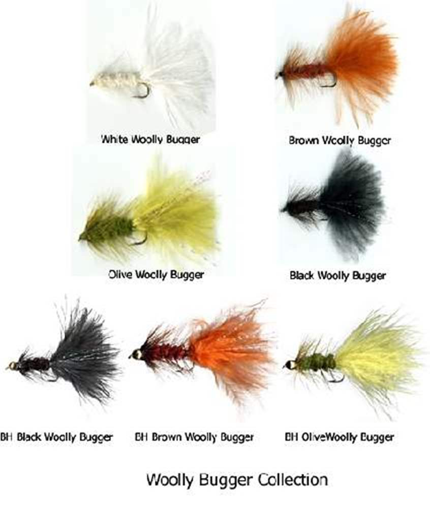 Woolly Bugger Collection