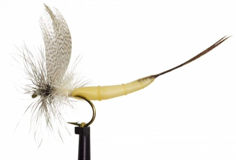 White Drake Detached Mayfly
