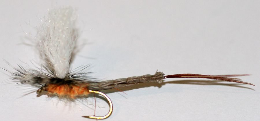 Cjs Improved Lively Mayfly Charles Jardine