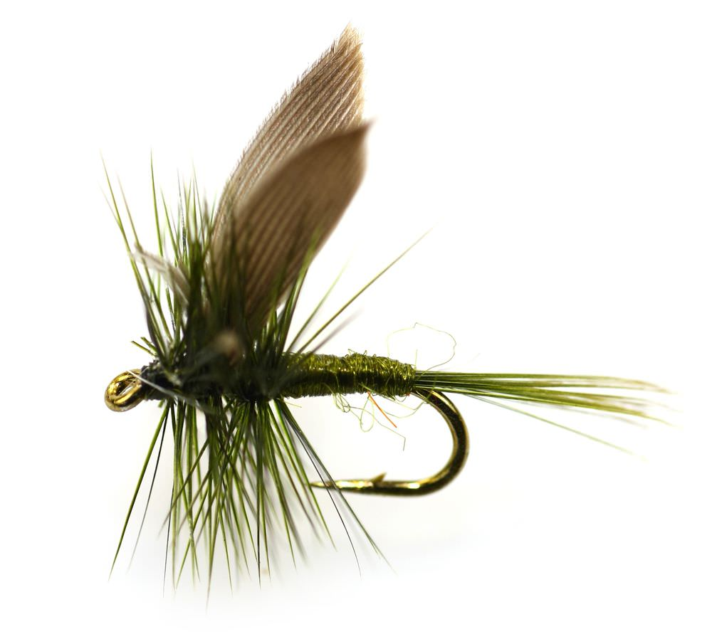 Panfish 2 further Natural Bait Artificial Lures also Olive Dun Trout Fly furthermore Page 22 further Fishing trout Fishing gf aa036804a. on micro fishing flies