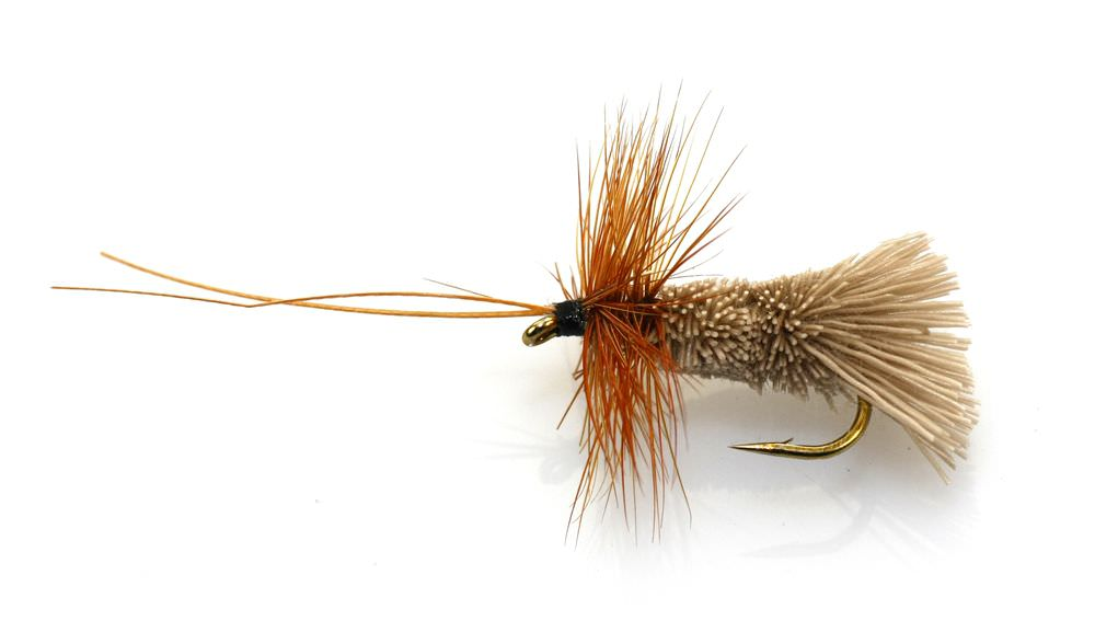 Caddis Natural