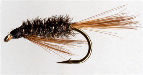 Black Nymph 18 Nymphs Trout Fly Fishing Flies GRHE Dragonflies Diawl Bach