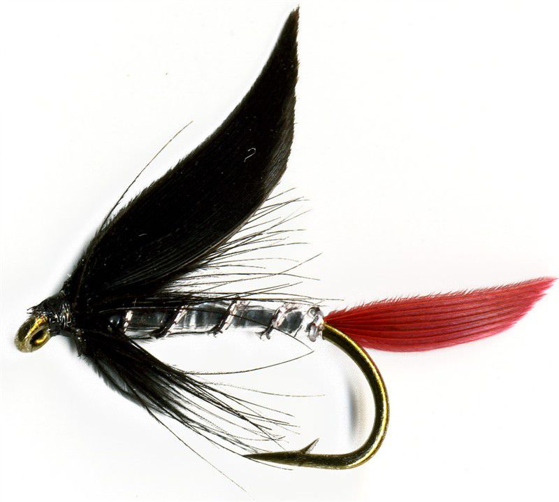 Wet Fly Snipe /& Purple 6 each Size 12 FREE shipping on All Additional Items