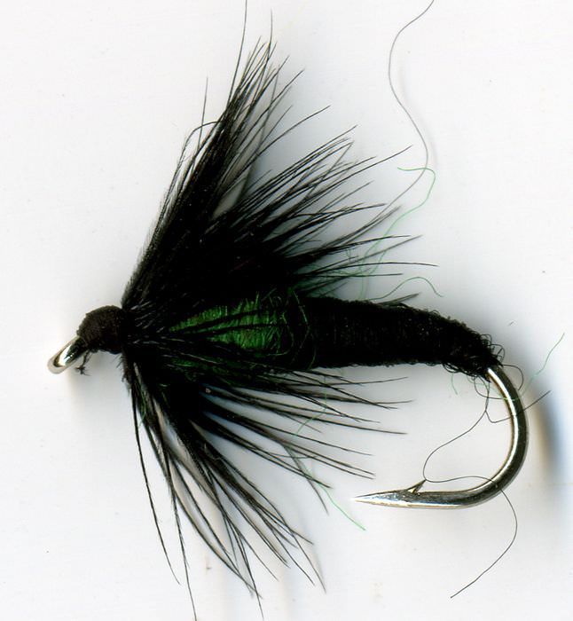 Caddis Spider Green