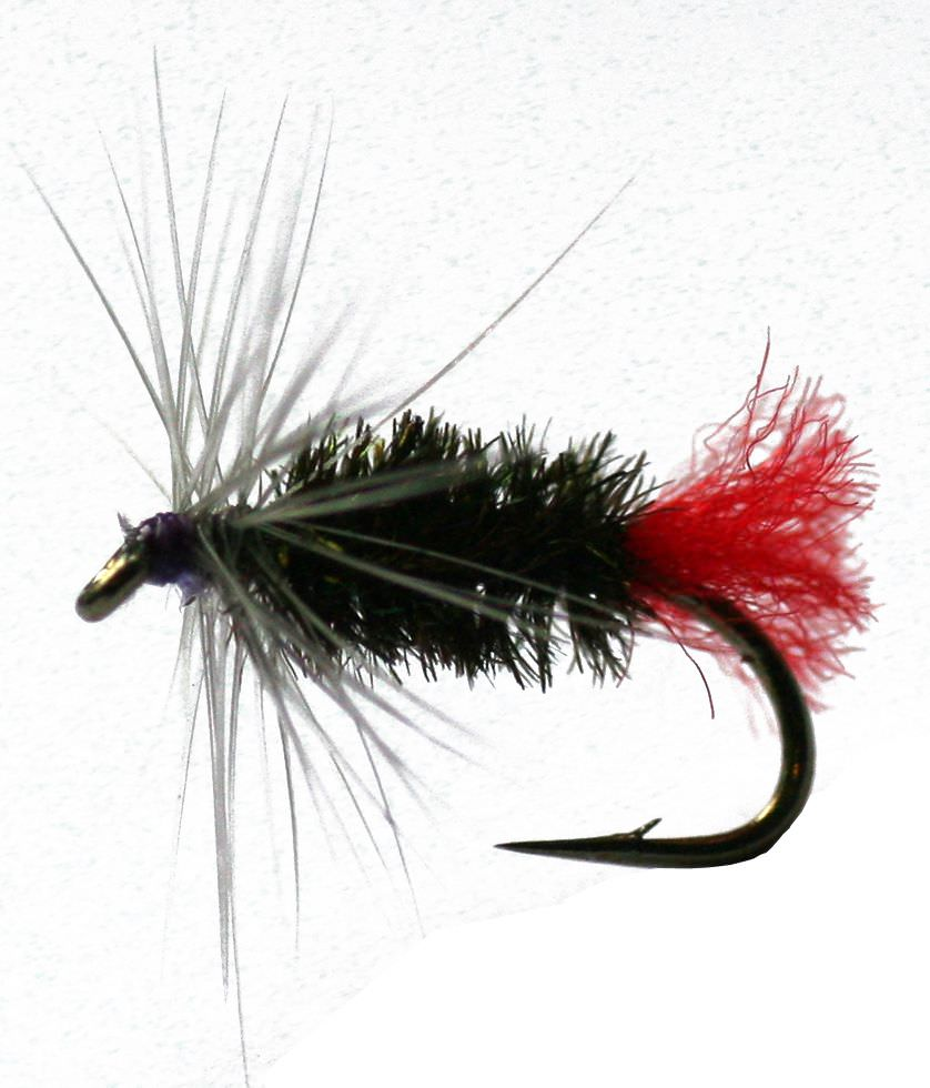 Sturdys Fancy Northern Spider Trout Fly