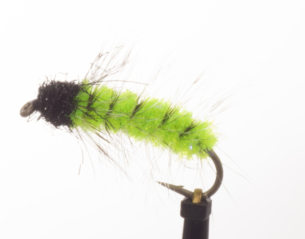 Chub Caterpillar Green