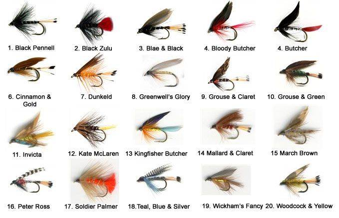 The Essential Loch Trout Fly Selection