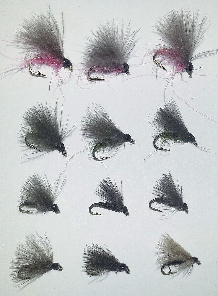 F Fly Collection
