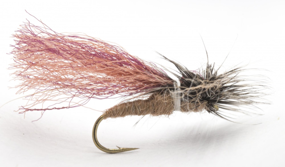 Parapoly Sedge - Dark Tan