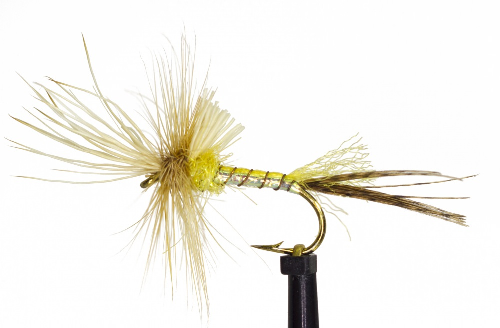 Yellow Drake Cripple Mayfly