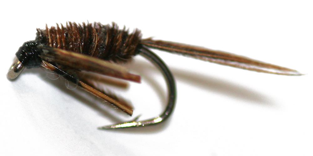 Leggy Pheasant Tail (Pack 12 Flies)