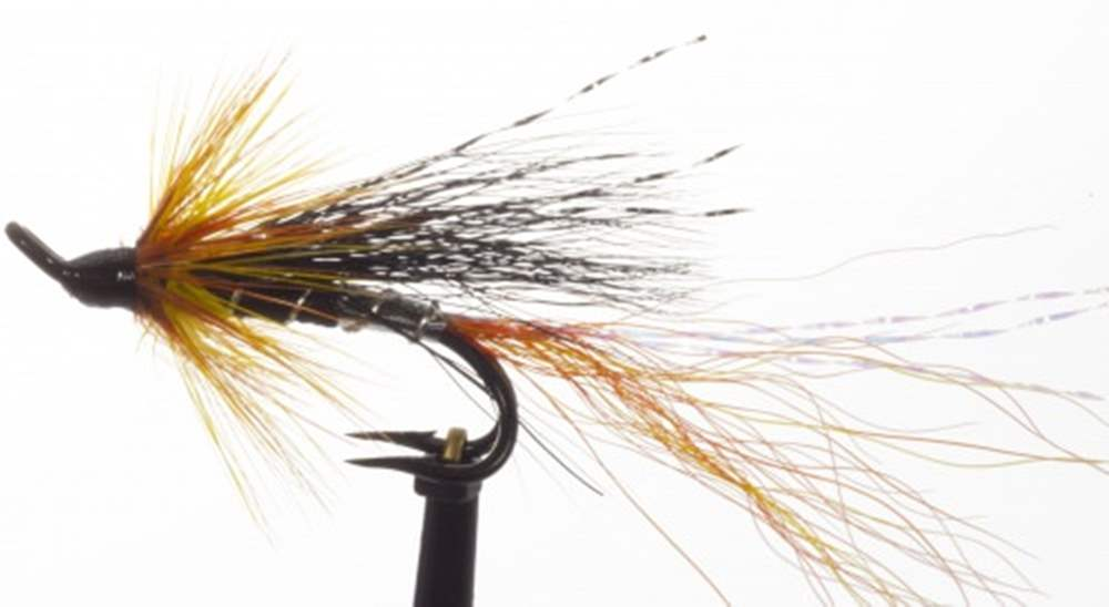 Allys Shrimp Cascade Salar Double Hook