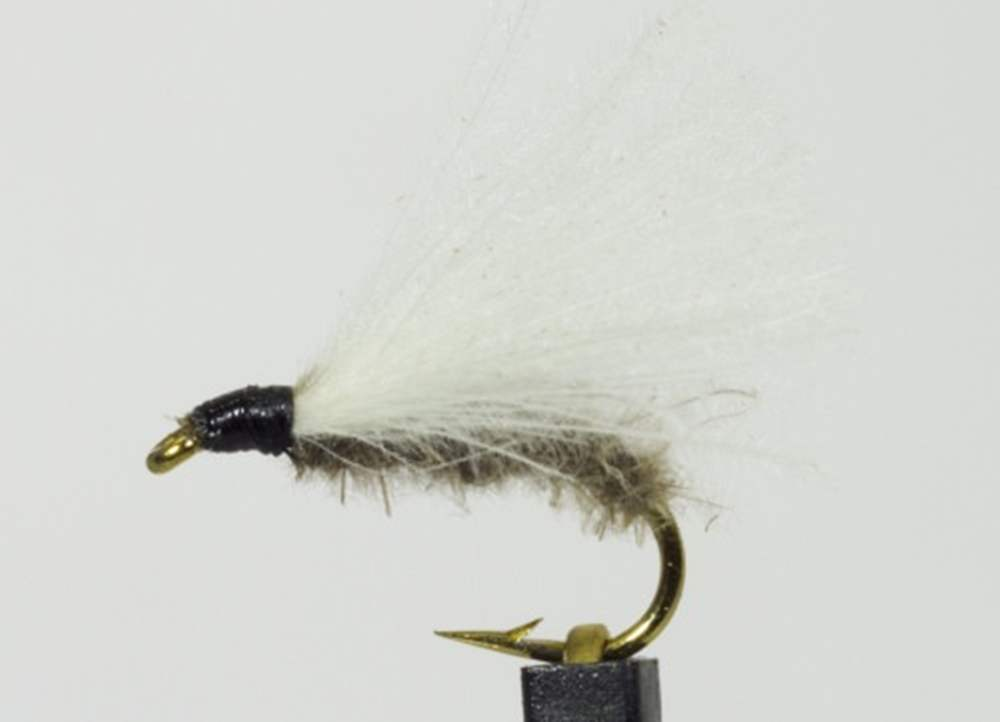 Sedge White Cdc