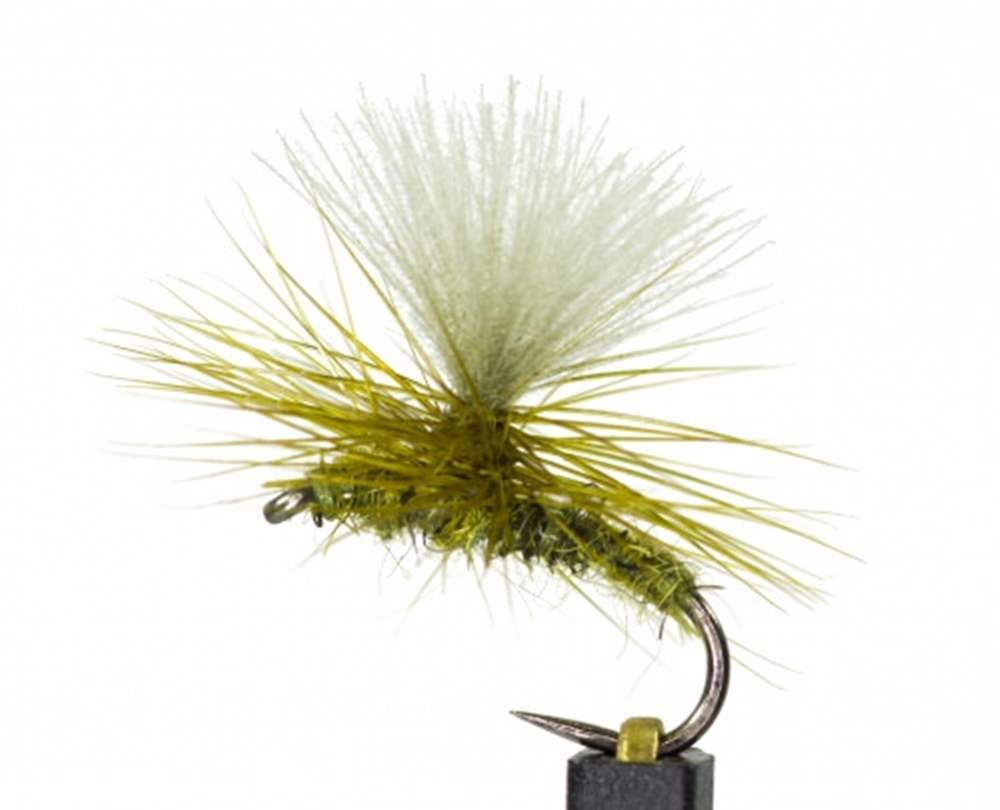 Barbless Universal Olive All Rounder
